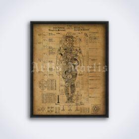 Printable Occult Anatomy, Anatomiae Occultii esoteric kabbalah poster - vintage print poster