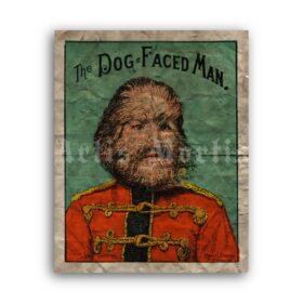 Printable Dog Faced Boy 1880s antique circus freak show poster - vintage print poster