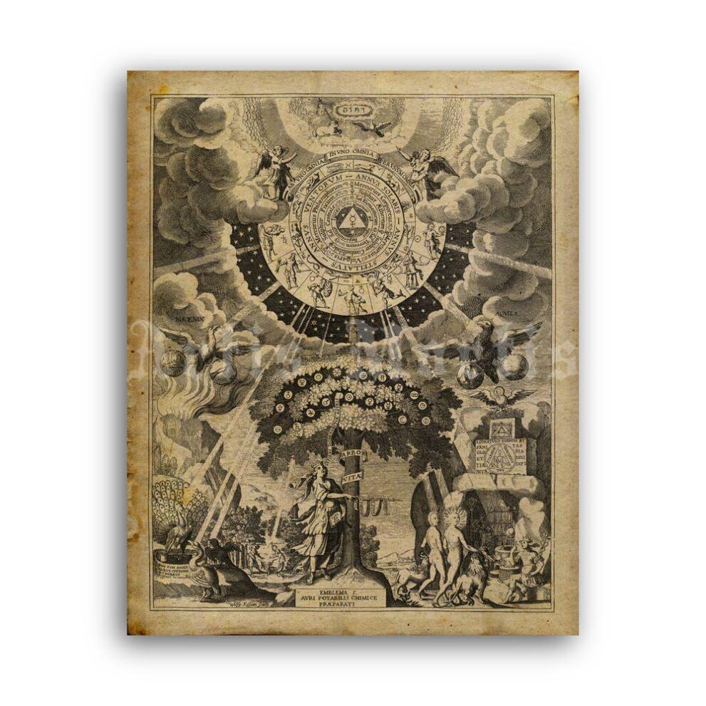 Printable Alchemical preparations medieval engraving - alchemy art - vintage print poster