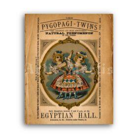 Printable Pygopagi Twins vintage freak show poster - vintage print poster