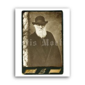 Printable Charles Darwin photo portrait antique cabinet card poster - vintage print poster