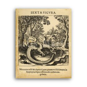 Printable Ouroboros, Serpent eating its tail - alchemical medieval art - vintage print poster