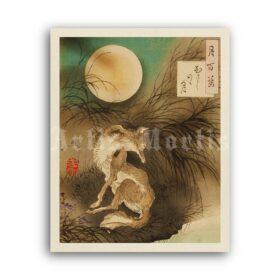 Printable Moon over Musashi Plain - Tsukioka Yoshitoshi woodblock print - vintage print poster