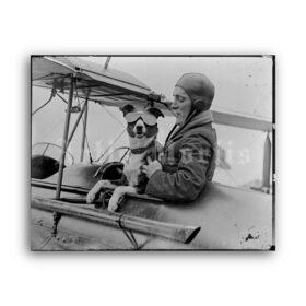 Printable Dog pilot, aviator - vintage photo, airplane, aviation, pet print - vintage print poster