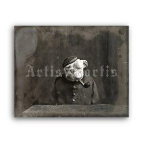 Printable Smoking dog, English Bulldog with pipe - vintage photo - vintage print poster