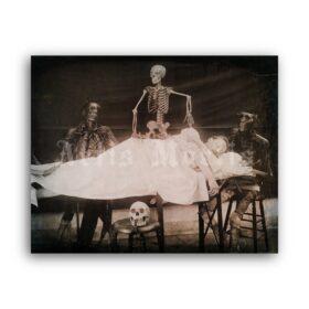 Printable Anatomist's nightmare - medical humor photo - vintage print poster